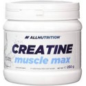 Creatina Muscle Max All Nutrition